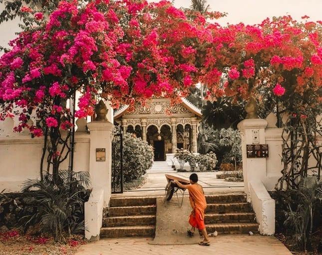 A monk apprentice in Luang Prabang
