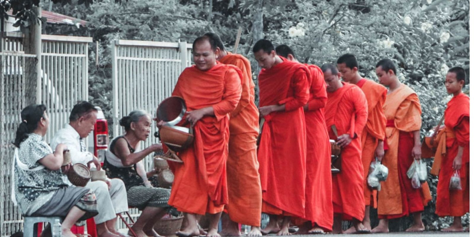 monks collecting alms in luang prabang