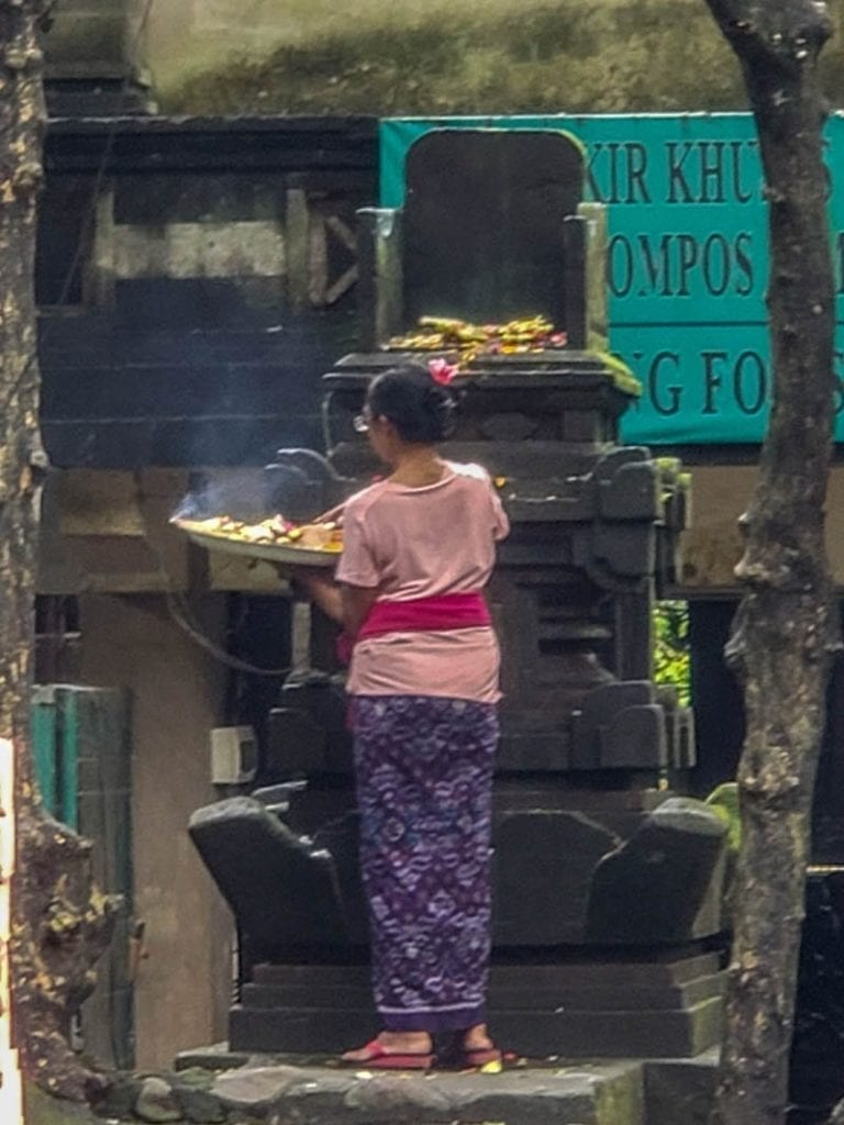 Ritual offerings in Bali, part of life in the Monkey Forest of Ubud