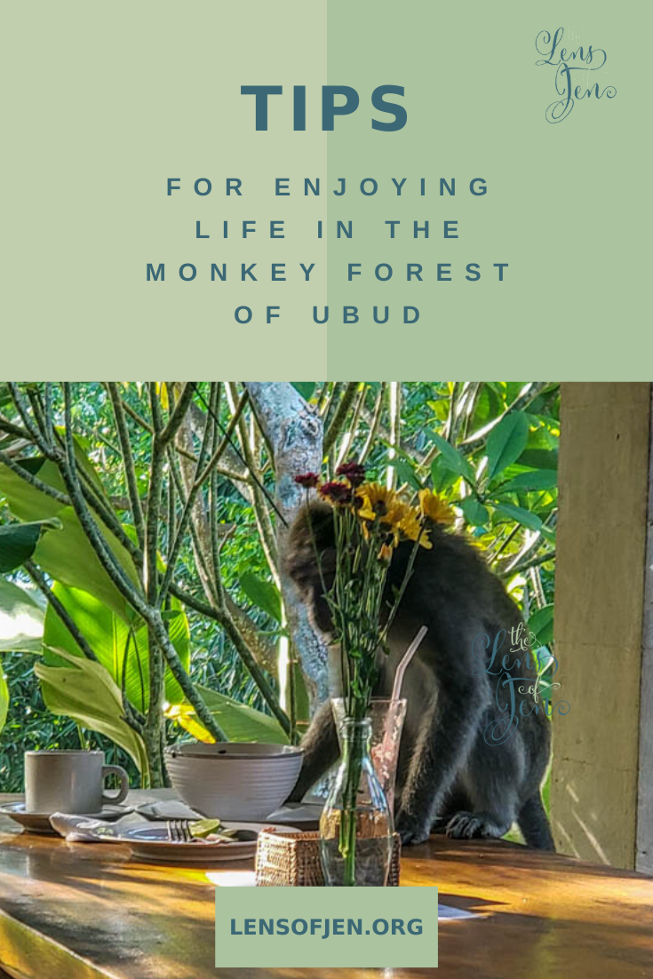Hotel Near the Ubud Monkey Forest