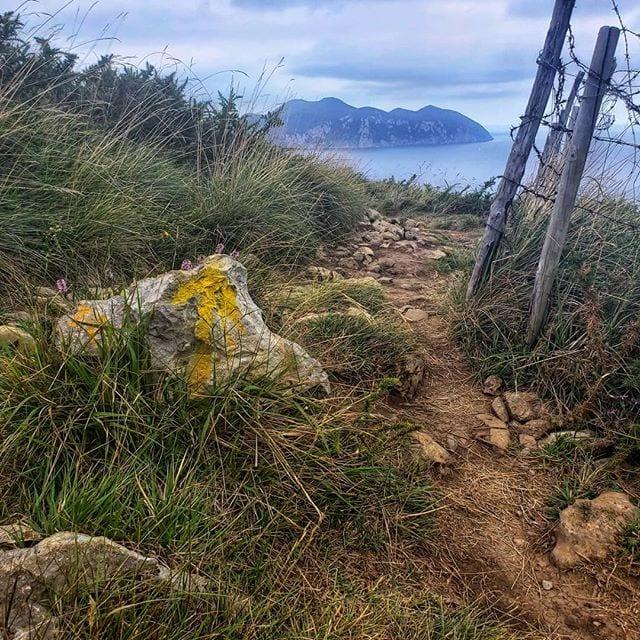 Arrow on the Camino del Norte