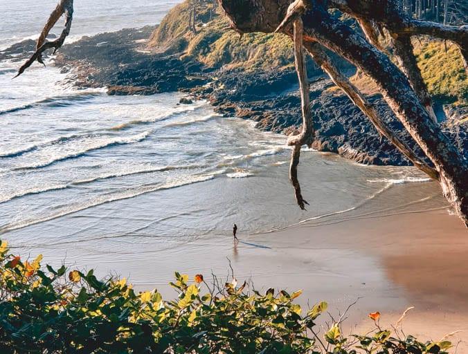 Cape Cove at Cape Perpetua