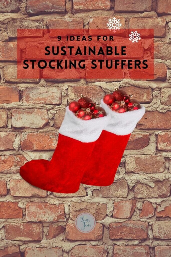 Sustainable Stocking Stuffer Pin