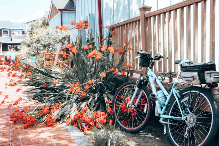 beach cruiser in cannon beach, a must-stop on any Oregon Coast road trip