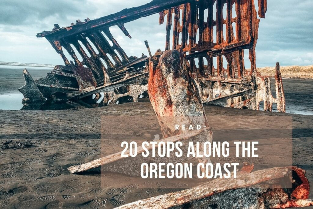 Visiting Oregon means road tripping along the Oregon Coast