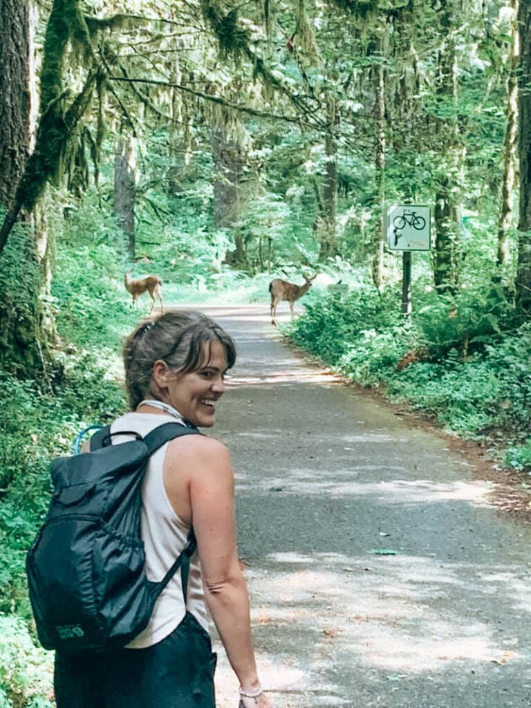 Deer at Silver Falls State Park