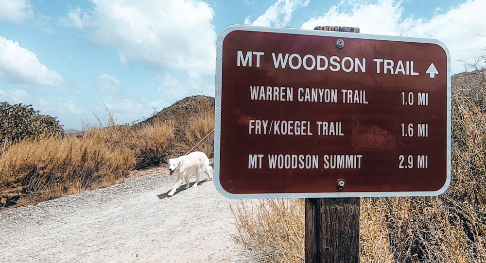 dogs are allowed on the mt woodson hike