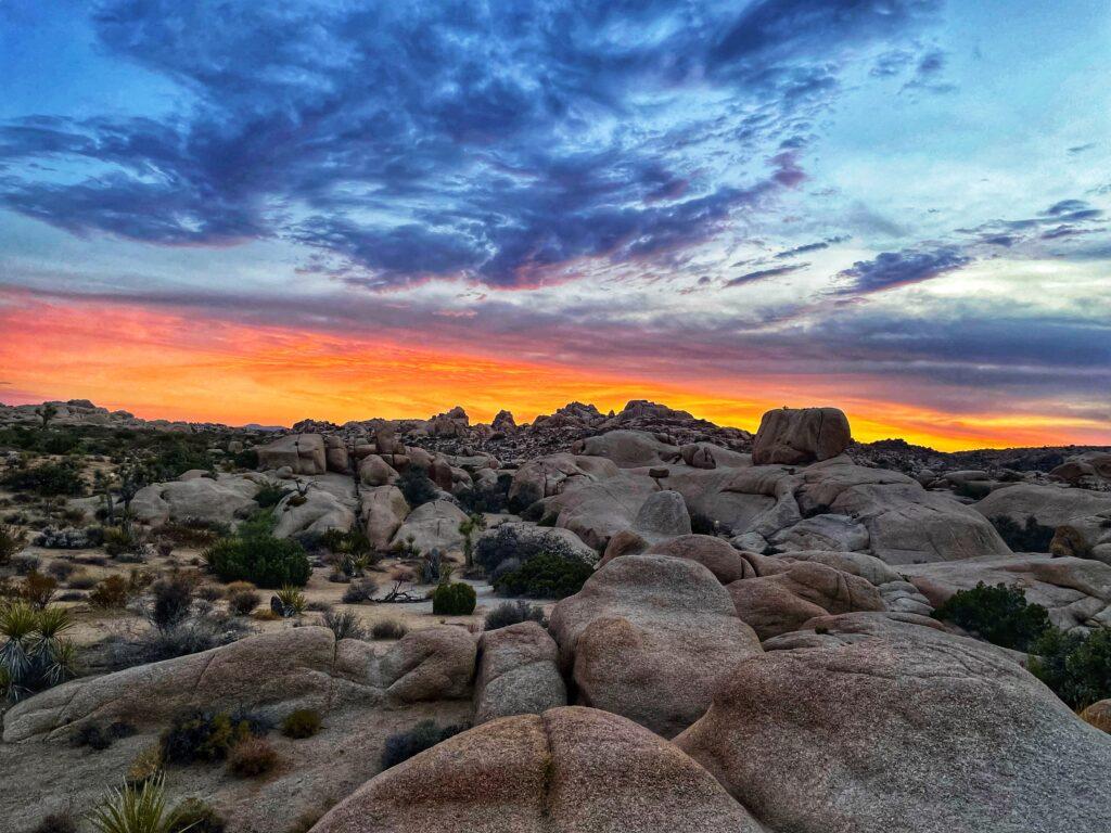 Rocks near the Jumbo Rocks Campground in Joshua Tree National Park