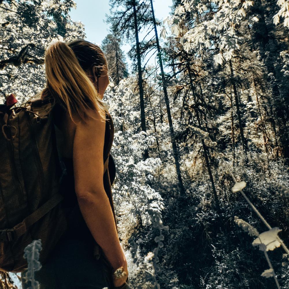 hiking the trail of ten falls